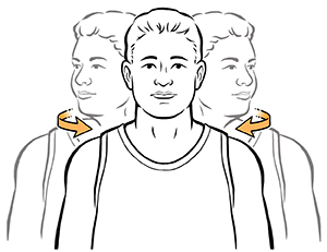 Demonstration of head rotations.